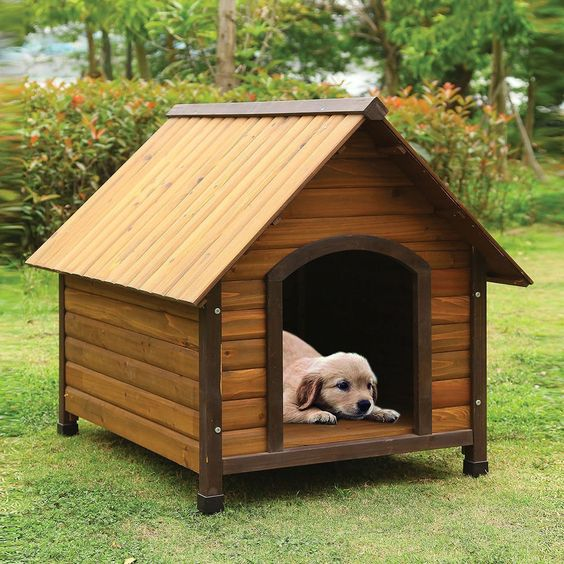 custom pet dog cat houses design and fabrication (33)